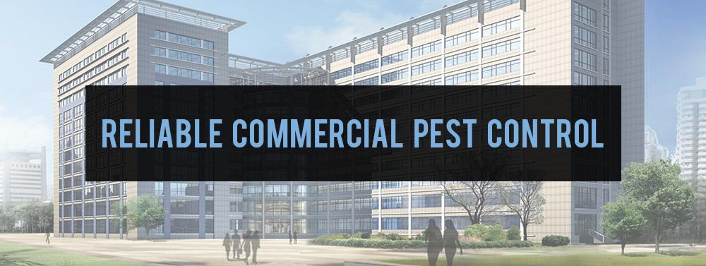 Reiable Commercial Pest Control