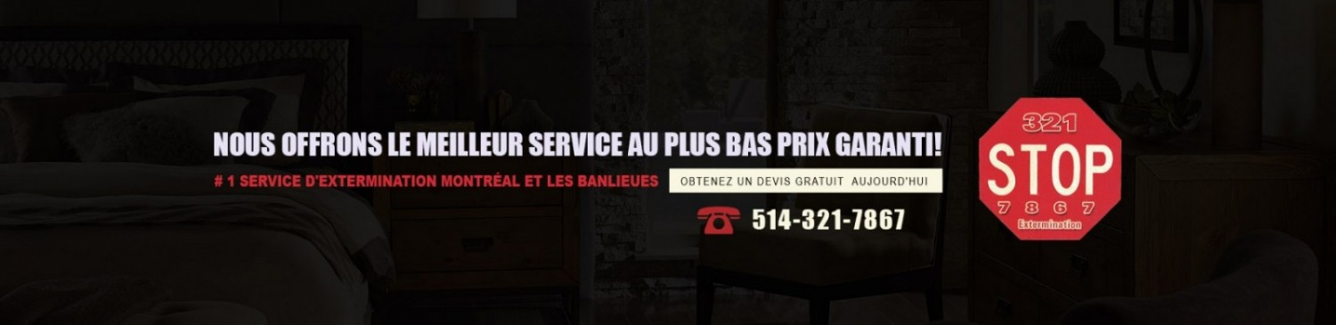 Extermination Montreal | Laval | West island