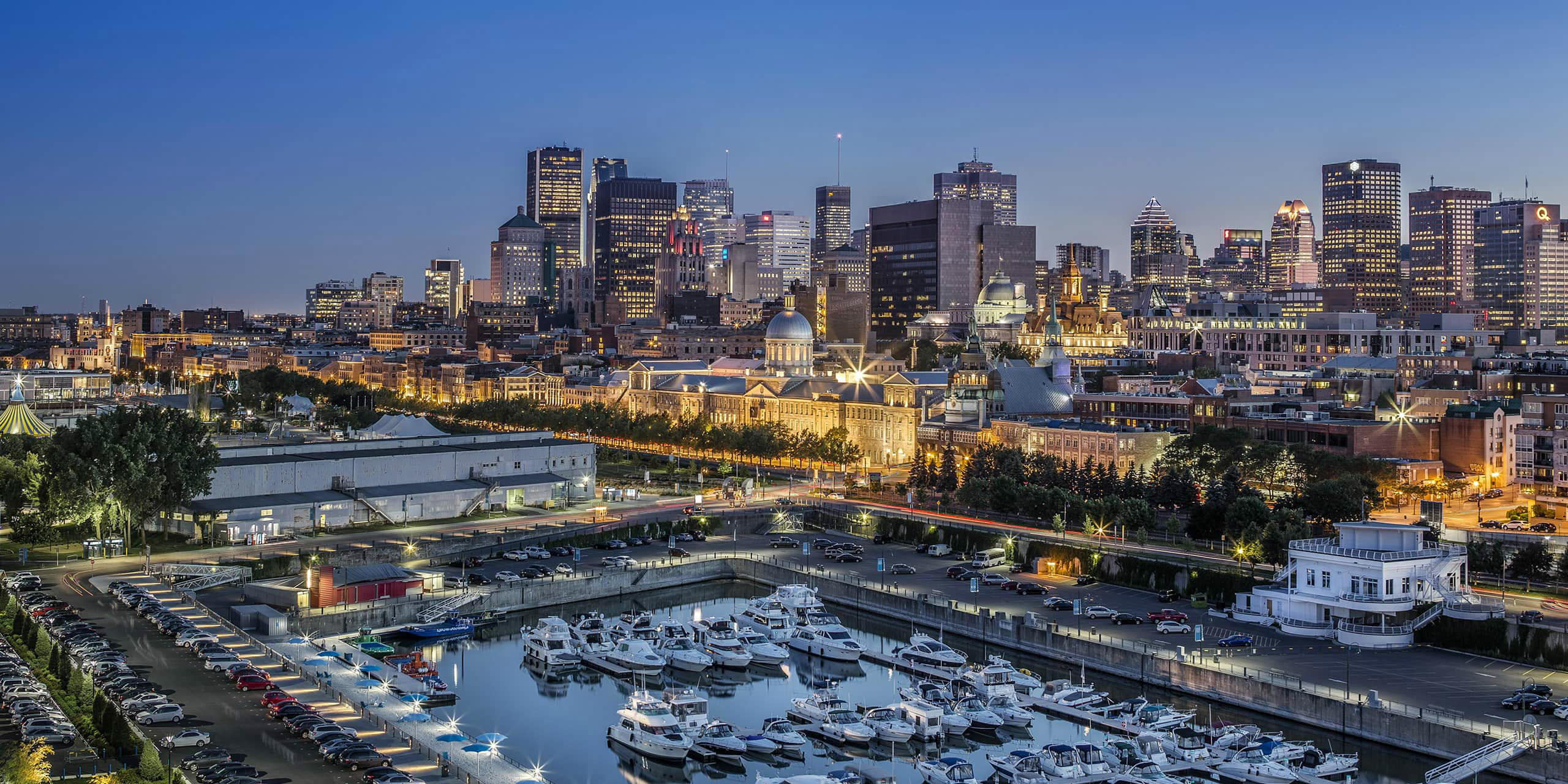 Extermination West Island | Montreal | Lex TemrinateurJM